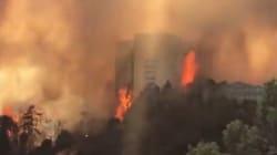 Les images du violent incendie qui ravage la ville d'Haïfa en