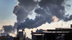 Das wirksamste Instrument gegen den Klimawandel ist