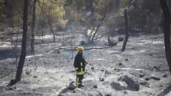 Έσβησαν όλες οι πυρκαγιές που μαίνονταν στο Ισραήλ και στη Δυτική Όχθη, σύμφωνα με τους