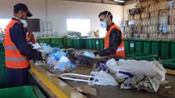 Tri sélectif : plus de 300 tonnes de déchets secs recyclables ont été collectés à Oran depuis avril