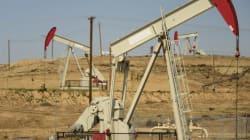 Τι λένε 10 κάτοικοι του Κατάκολου για την εξόρυξη του πετρελαϊκού κοιτάσματος της