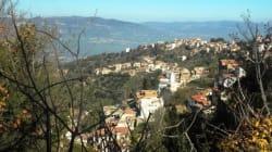 D'Azouza à Alger, ma vie pérégrine d'instit (XX) : La Touiza des olives... et le directeur