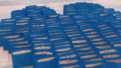 숙명여대에 놓인 '파란 봉투 159개'의 특별한