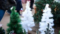 Χριστούγεννα στο Πεδίον του Άρεως: Η πρόχειρη χρυσόσκονη στο «πάρκο της