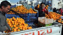 Tunisie: Vers la destruction de la moitié de la récolte des