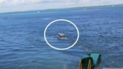 Leur voiture a pris un bain du 31 décembre dans les eaux du