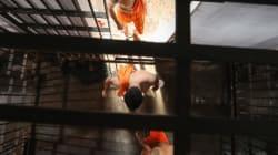 Βραζιλία: Νέα σφαγή σε φυλακή. Ξεπερνούν τους 100 οι νεκροί από τις εξεγέρσεις που ξεκίνησαν από τις αρχές του