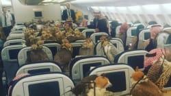 Ils voyagent dans un avion de Qatar Airways avec... 80