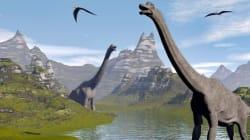 2억 년 된 단백질이 공룡 신체에서