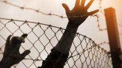 Amnesty International dénonce des exécutions à grande échelle en