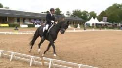Le champion marocain de dressage de chevaux accusé de viol en