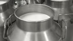 Le prix du lait ne changera pas en 2017, promet Fethi Messar, DG de