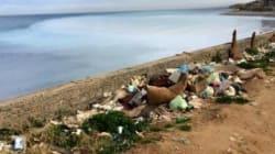 Détresse écologique sur le littoral algérien: 1 400 points noirs de rejets de déchets