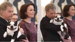 Ο πρόεδρος της Φινλανδίας έχει τον πιο άχαρο μα ταυτόχρονα χαριτωμένο