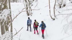 Forget Skiing: Alternative Activities To Enjoy In The