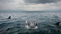 Πρώην μέλος του αμερικανικού Πολεμικού Ναυτικού εξηγεί πώς να επιβιώσετε από επίθεση