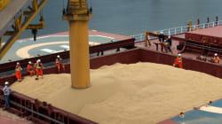 Η Τουρκία επισημοποιεί τους περιορισμούς στις εισαγωγές ρωσικών σιτηρών, σύμφωνα με ρωσικά