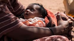 The Livestock Somalis Rely On To Survive Are Dying - They Worry Their Children Are