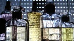 10 fragrances masculines pour le