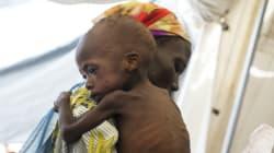 Στο Νότιο Σουδάν τρώνε φύλλα δέντρων και σπόρους για να επιβιώσουν εν μέσω της οξείας διατροφικής