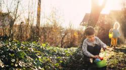 Grüne Hauptstadt Essen - Projekte zum grüner