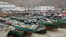 Les pêcheurs d'Al Hoceima indemnisés après la perte de leurs filets à cause des