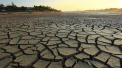 Changement climatique: de la sécheresse des terres à la migration d'un