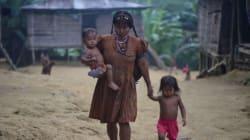 Η Διεθνής Αμνηστία καταδικάζει το «κύμα δολοφονιών» μελών αυτόχθονων κοινοτήτων στη