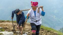 Η συγκινητική ιστορία μιας άγνωστης Κινέζας που διάβασαν εκατομμύρια