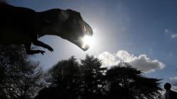 Voici à quoi ressemblait l'un des derniers dinosaures d'Afrique, retrouvé au