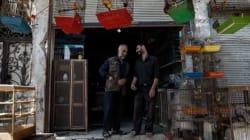 Syrie: violences en recul en ce début d'accord sur la