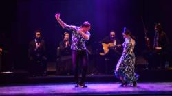 Pour le danseur de flamenco José Porcel,