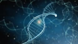 The Future Of Nutrition Is Genetic