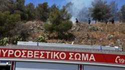 Υπό έλεγχο η πυρκαγιά στην περιοχή του Αγίου Θωμά Δενδρών στην