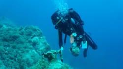 Αρχαία κατάλοιπα, ναυάγια και σημαντικά κινητά ευρήματα εντοπίστηκαν στη