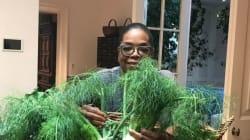 Η Oprah δεν μπορεί να ξεχωρίσει τον άνηθο από τον μάραθο. Εσείς