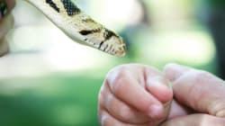 Μητέρα βάζει ένα φίδι να δαγκώσει τη μόλις ενός έτους κόρη της για της...δώσει ένα μάθημα