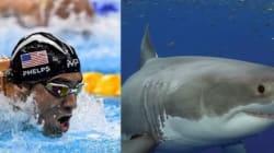 Ο Φέλπς θα κάνει κόντρα με έναν λευκό καρχαρία. Ποιος θα