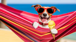 The Summer Holidays Are Here: How To Take Great Holiday