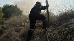 Οριοθετημένες και χωρίς ενεργά μέτωπα οι φωτιές σε Λευκίμμη και