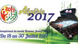 Championnat du monde de handball (U-21) : la France, la Suède et l'Allemagne grands