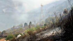 Incendies: mobilisation des Fonds des catastrophes et de solidarité pour la prise en charge des 17 wilayas