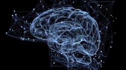 Έρευνα: Κύτταρα στον εγκέφαλο ελέγχουν τη γήρανση- σε ποιο σημείο