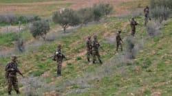 4 bombes artisanales détruites par les forces de l'ANP à Tipaza