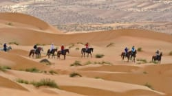 Gallops of Morocco, le premier raid à cheval dans le
