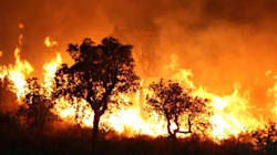Les incendies repartent de plus
