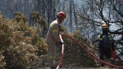 Πυρκαγιά εκδηλώθηκε στον Μυλοπόταμο