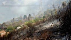 Appel à la mobilisation totale pour maîtriser les feux de forêts les jours à