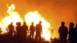 Ιταλία: Εθελοντές πυροσβέστες έβαζαν φωτιές ώστε να λαμβάνουν την αμοιβή για τη συνδρομή τους στην
