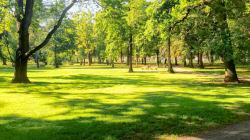 Πατέρας με όλη τη σημασία της λέξης. Έφτιαξε πάρκο 34 εκατ. για την ΑΜΕΑ κόρη